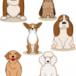 Cute dog collection - Stock Vector
