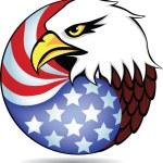 Vector eagle head and American flag — Stock Vector