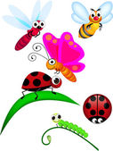 Cute Insect cartoon — Stock Vector