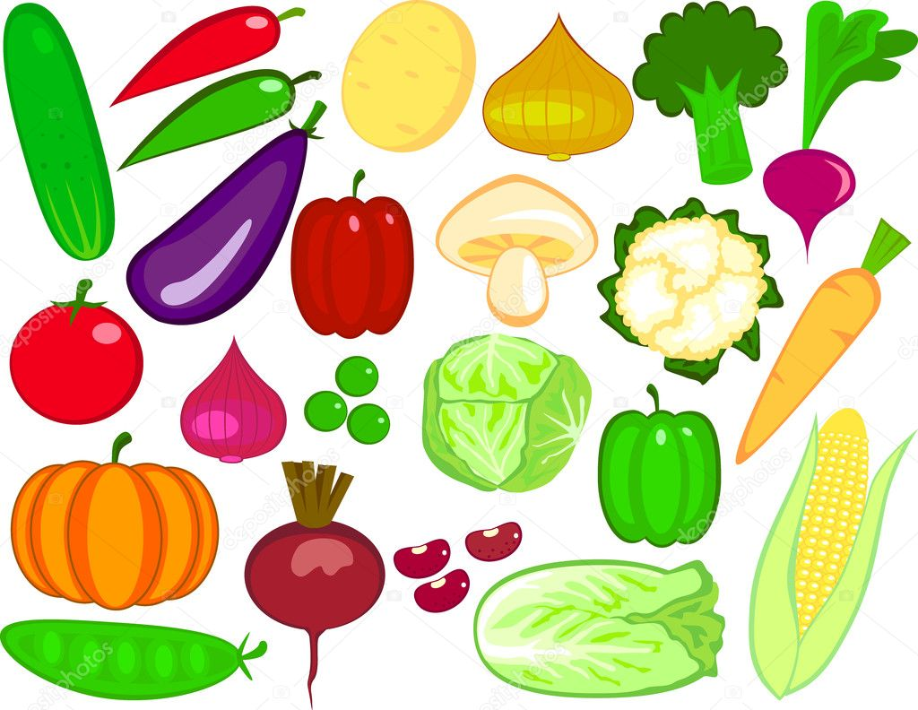 image gallery of vegetable drawing