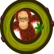 Royalty-Free Stock Vector Image: Alphabet O with Orangutan cartoon