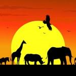 Wild life silhouette in wildlife Africa — Stock Vector