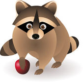 Raccoon — Stock Vector