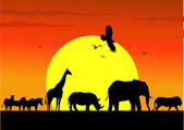 Wild life silhouette in wildlife Africa — Stock Vector