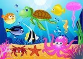 Deniz hayat illüstrasyon — Stok Vektör