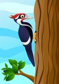 Woodpecker cartoon — Stock Vector