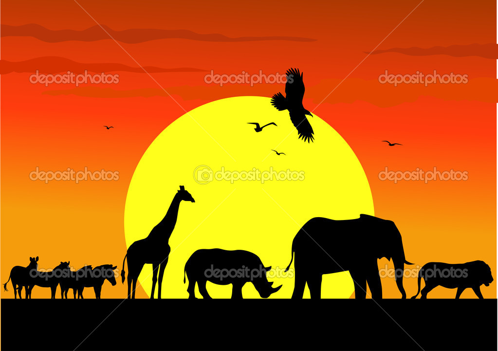 Wild life silhouette in wildlife Africa — Stock Vector #5560204