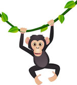 Cute chimpanzee — Stock Vector