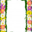 Stock Vector: Flower frame background