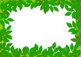 Spring leaf frame — Stock Vector