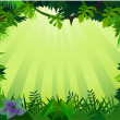 Forest background - Stock Vector