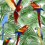 pássaro papagaio — Vetor de Stock  #5711687