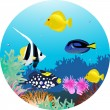 Sea life illustration — Stock Vector