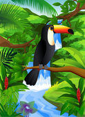 Toucan bird in the forest — Stock Vector