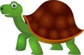 Vector cartoon tortoise — Stock Vector