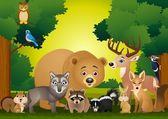 Wild animal cartoon — Stock Vector