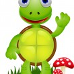 Funny turtle cartoon — Stock Vector