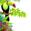 Vector illustration of toucan in the tropical jungle — Stock Vector