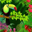 Stock Vector: Vector illustration of toucan in the tropical jungle