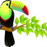 Vector illustration of toucan bird — Stock Vector