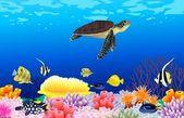 Sea life background — Stock Vector