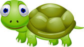Funny turtle cartoon — Stock Vector