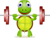Funny turtle lift barbell — Stock Vector