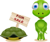 Turtle sell his house — Stock Vector