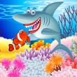 Shark and clown fish — Stock Vector