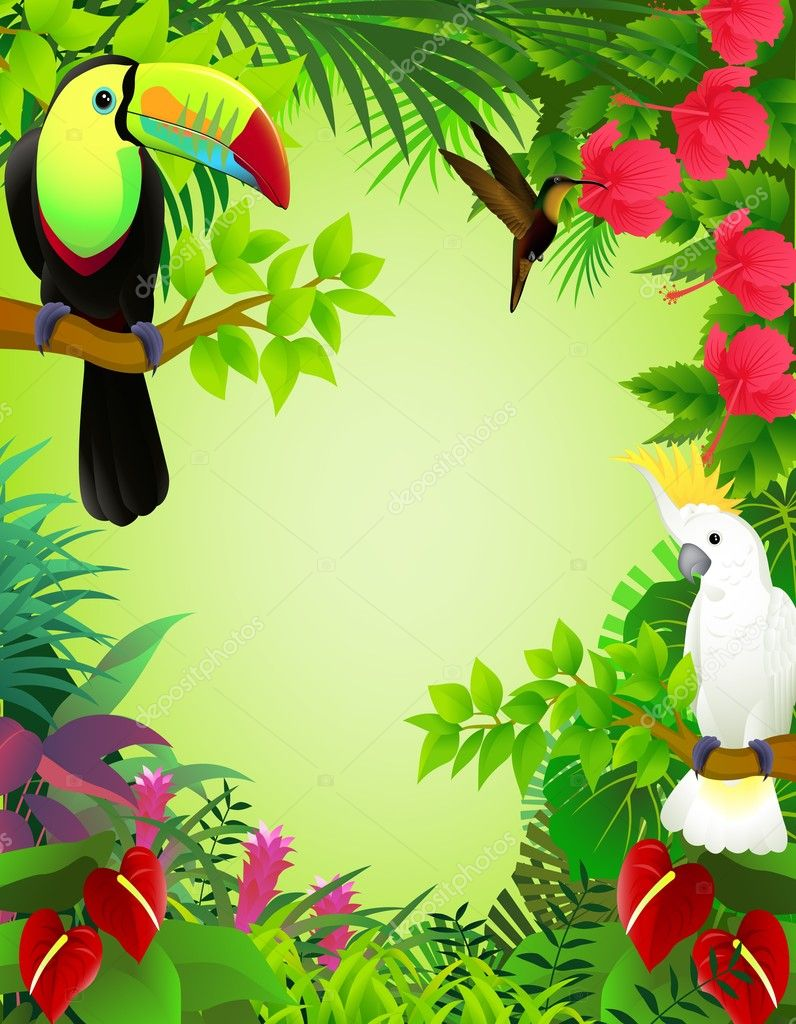 Vector illustration of tropical birds in the jungle — Stock Vector #6258980