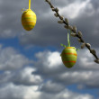 Easter eggs, — Stock Photo