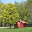 Traditional red swedish house — Stock Photo #5603532