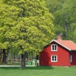 Traditional red swedish house — Stock Photo #5603533