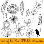 Set of illustrated retro nature elements — Stock Photo