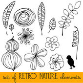 Set of illustrated retro nature elements — Stock Photo