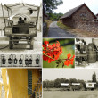 Collage of rural images — Stock Photo