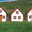 Iceland historic houses — Stock Photo