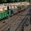 Freight diesel train — Stock Photo #6026545