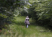 Walking in a forrest — Stock Photo