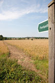 Footpath — Stock Photo