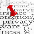 Royalty-Free Stock Photo: Web privacy