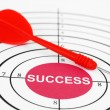 Success target — Stock Photo