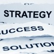 Strategy sucess solution - Stock Photo