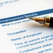 Employment form — Stock Photo #6674164
