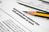 Student visa form — Stock Photo