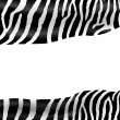 Royalty-Free Stock Vector Image: Zebra texture