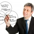 Stock Photo: Businessman wring a marketing diagram