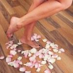 Beautiful women legs — Stock Photo