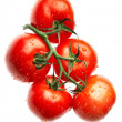 Stock Photo: Ripe tomato