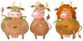 Cows, set — Stock Photo